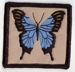 Ulysses Butterfly Patch