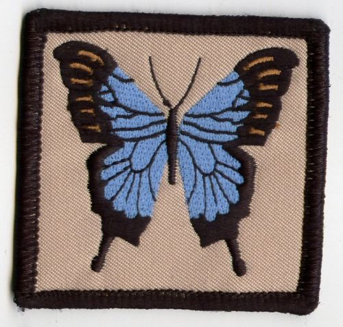 Ulysses Butterfly Patch