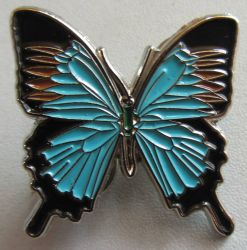 Ulysses Blue Butterfly Badge